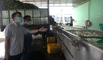 Bộ Công Thương kiểm tra công tác quản lý nhà nước trong Tháng hành động vì an toàn thực phẩm năm 2021